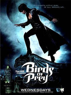 Birds of Prey, from Wikipedia